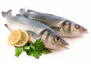 Shop for Kosher Fresh Fish
